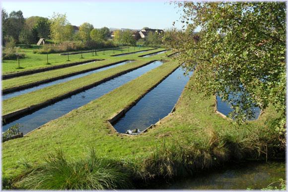 bassins2